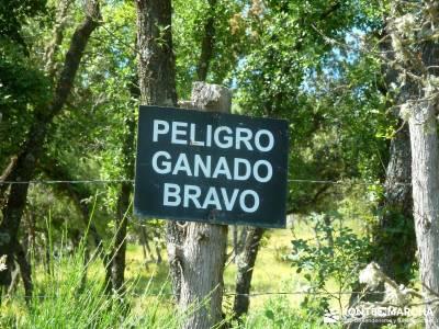 Embalse Pedrezuela; excursiones programadas; rutas alrededor de madrid; madrid excursiones